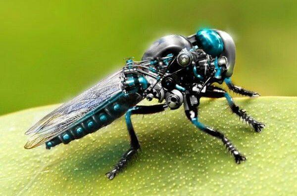 DeepFly3D: La mosca robot que podría desarrollarse pronto