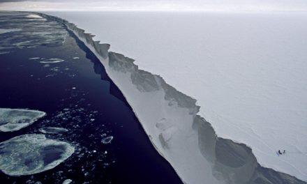 Fotos satelitales del desprendimiento de un enorme iceberg en la Antártica