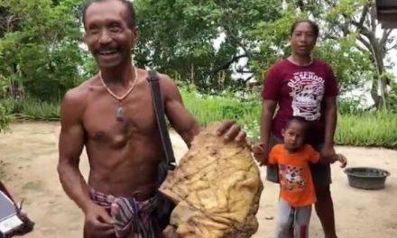 Jumurus Thiachot encontró vómito de ballena valorado en 300 mil dólares
