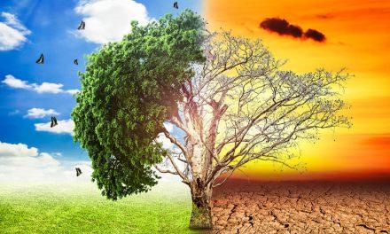 Está claro: el cambio climático afecta y seguirá afectando la salud