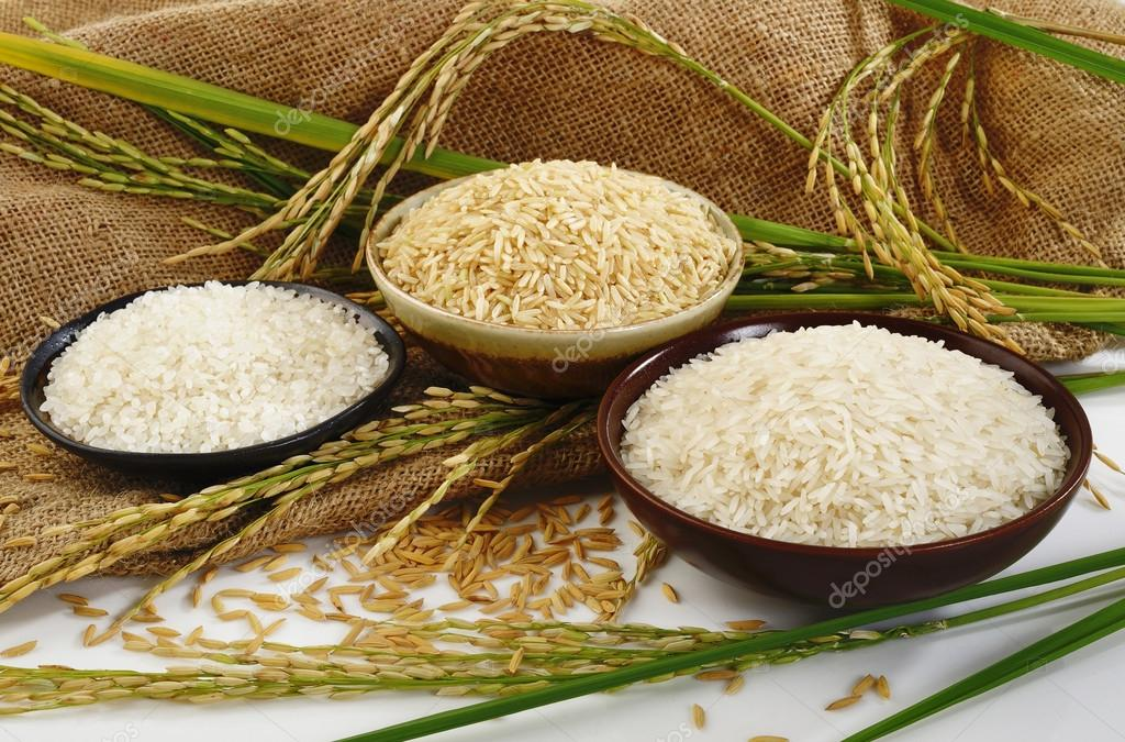 Cáscaras de arroz son utilizadas ingeniosamente contra la contaminación