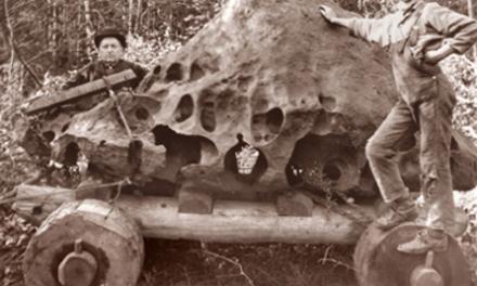 Conozca la historia de Tomanowos, el meteorito misterioso
