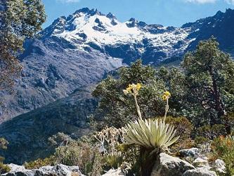 El 2 de mayo de 1952 es creado el Parque nacional Sierra Nevada