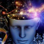 Resultados del experimento más grande del mundo sobre la inteligencia