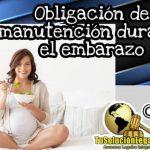 Obligación de manutención durante embarazo