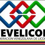Fevelicor: Se implementará plan piloto con estricto cumplimiento de medidas preventivas para reactivación progresiva de actividades del sector