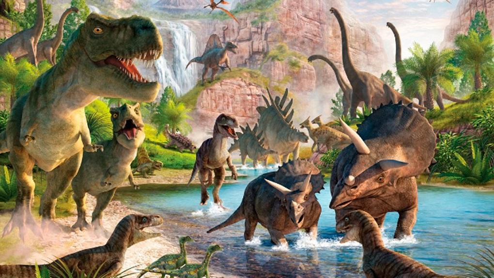 La vida se recuperó en tan sólo 700.000 años tras el fin de los dinosaurios