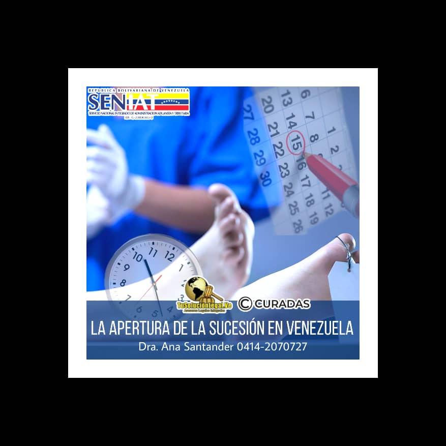 abogados venezuela, ana santander, consultas legales on line gratis