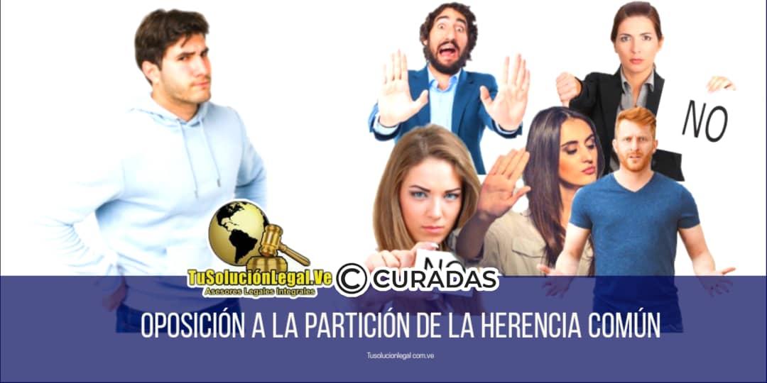 abogados venezuela, ana santander, consultas legales on line gratis,