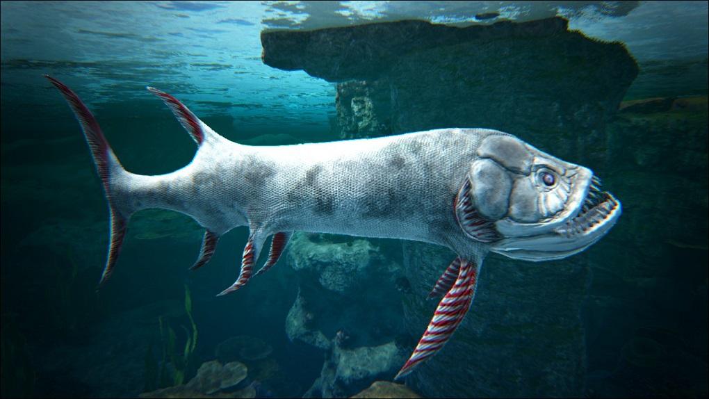 Patagonia, Argentina: Hallan fósil de pez gigante de 70 millones de años