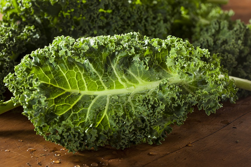 Superalimento: El kale tiene más calcio que la leche y es desintoxicante