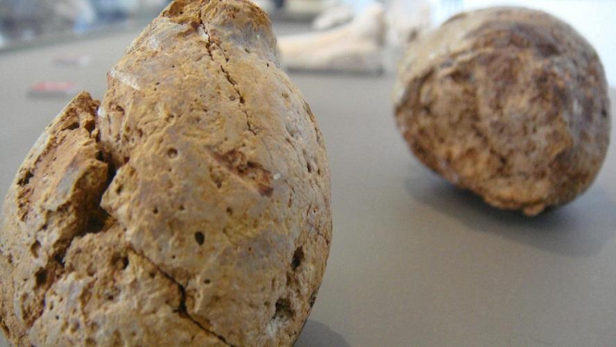 """Encuentran en la playa una """"granada fósil"""" y les estalla en la cocina"""