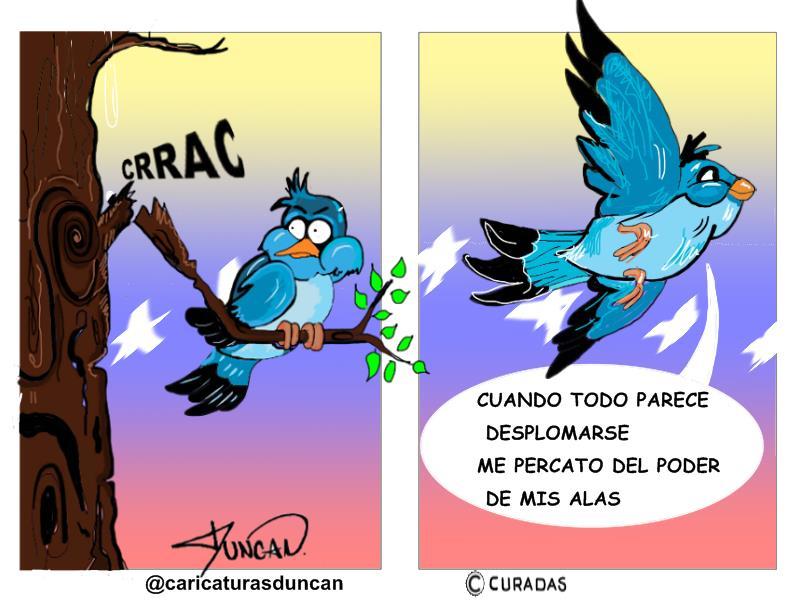 El poder de mis alas - Caricatura de Duncan