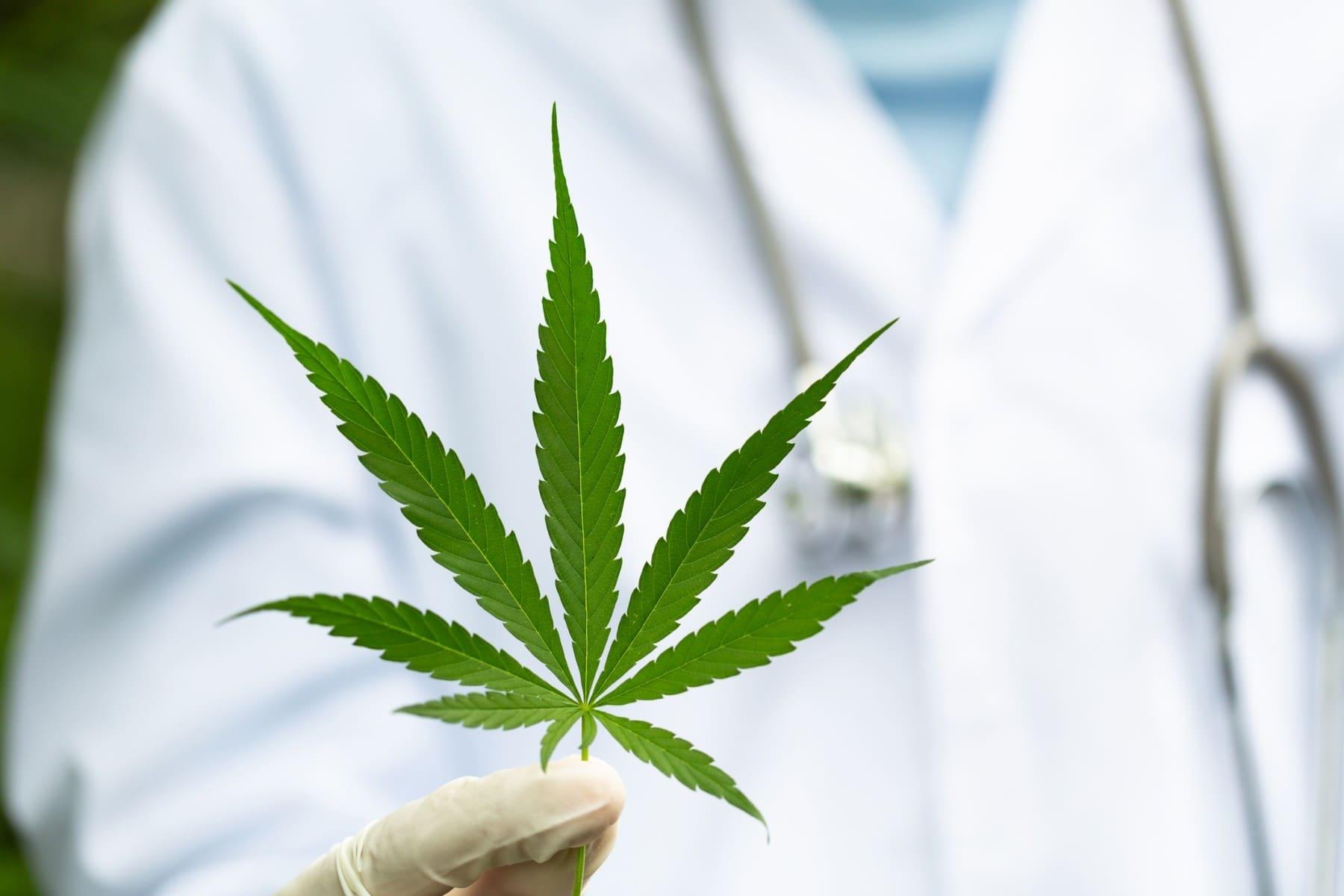 20 de abril: Día Mundial de la Marihuana