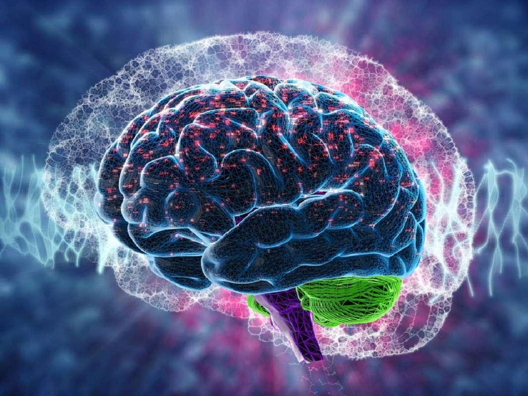 Descubre por qué nuestro cerebro a veces nos sabotea