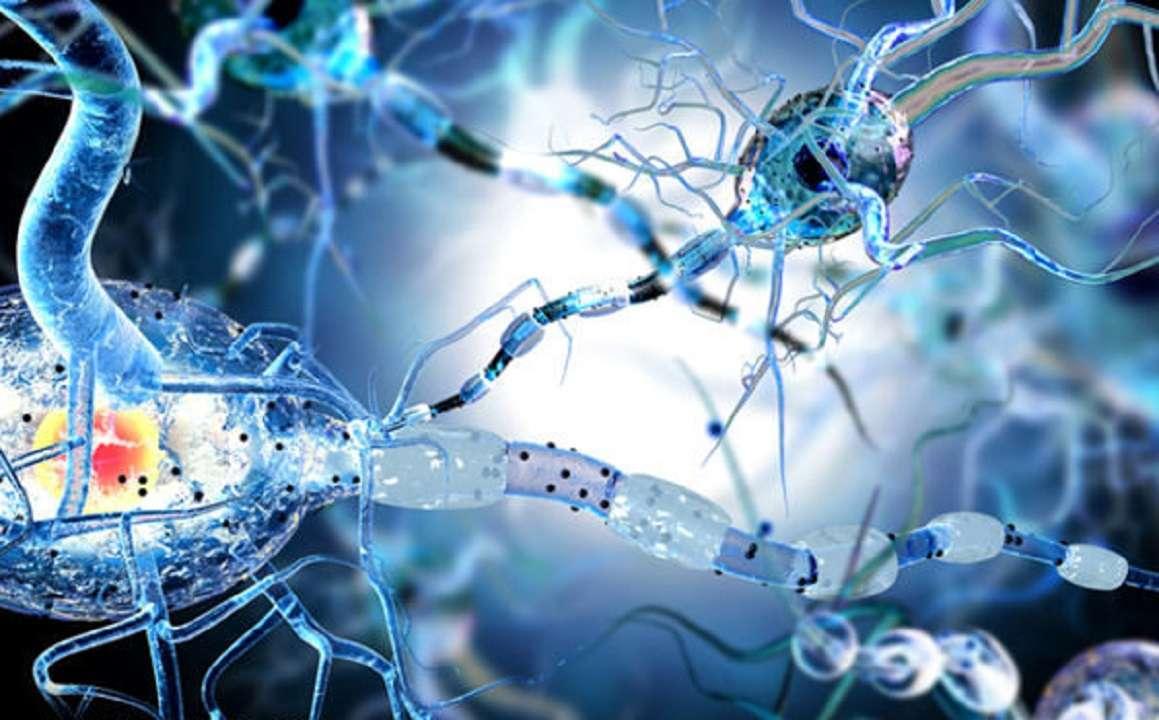 La epilepsia: conoce los sintomas y causas de esta enfermedad