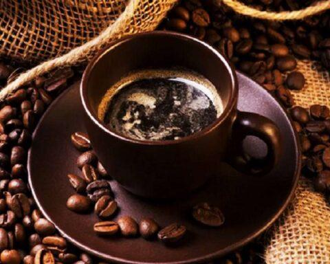 El café: conoce un poco más sobre esta deliciosa bebida