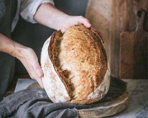 Historia del pan: un rico alimento que nunca falta en nuestra mesa