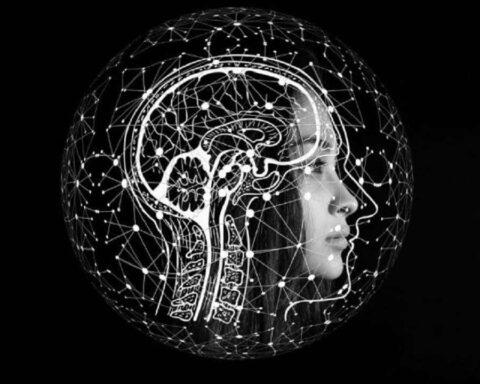Huella digital: nuestro cerebro tiene una y cambia con el tiempo